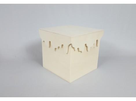 Caja cubo con tapa `escurrida´Ref.P106C01